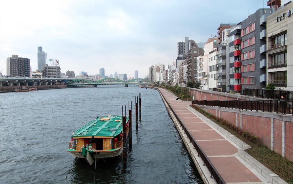 L'atlante delle città: Sao Paulo e Tokio